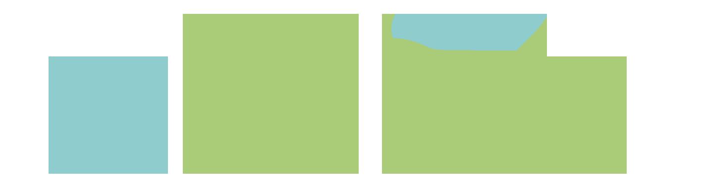 II Congreso aelec